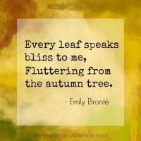 Autumn Loving & Learning